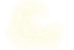 smile_21(1).png